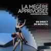 Maillot : La Mégère Apprivoisée en salles