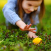 Parc des Arènes : Chasse aux œufs