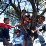 CEDAC : École pleine nature