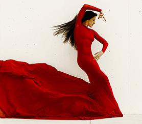 L'art du Flamenco au CEDAC