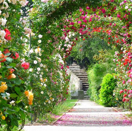 Un « Eco jardin » au Monastère